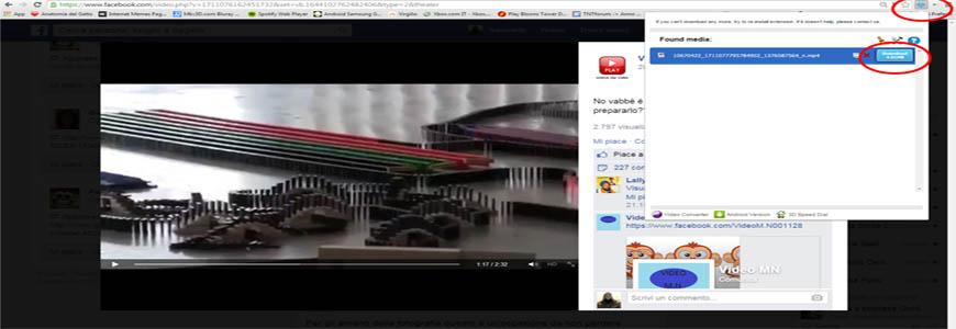 scaricare video con fvd downloader
